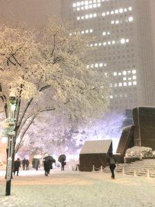 雪 新宿駅付近